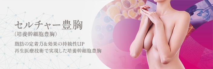セルチャー豊胸(培養幹細胞豊胸)